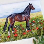 Summer Horse1