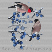 Bullfinches on Blackthorn