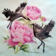 Demoiselle Cranes1