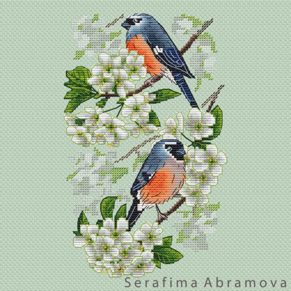Bullfinches on Cherry Tree