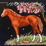 Spring Horse1