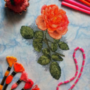 Orange rose2