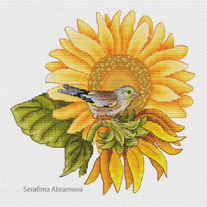 Bird On The Sunflower
