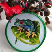 Red Eyed Tree Frog2