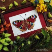 Butterfly Aglais io2