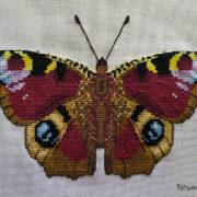 Butterfly Aglais io1
