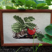 Mouse in Strawberries1