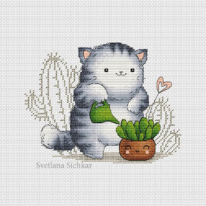Kitten and succulents